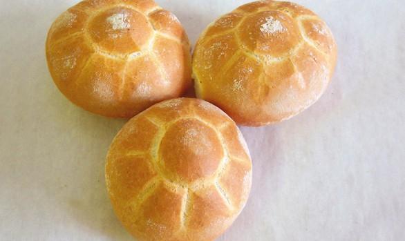 Tartarughe-Semmel Bäckerei Burgauner