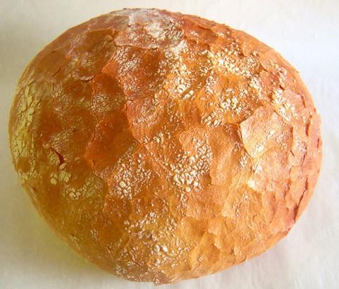 Pan Pugliese Bäckerei Burgauner
